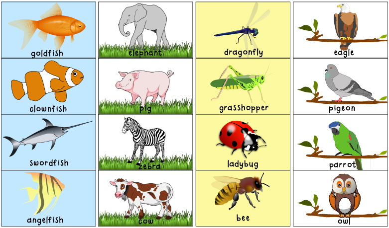 Matching Animal Halves Printable Activity Totschooling - Toddler
