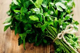A fresh bunch of parsley position of a wooden table