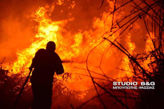 Στις φυλακές Ναυπλίου οι δύο Έλληνες που συνελήφθησαν για τις πυρκαγιές στην Ηλεία