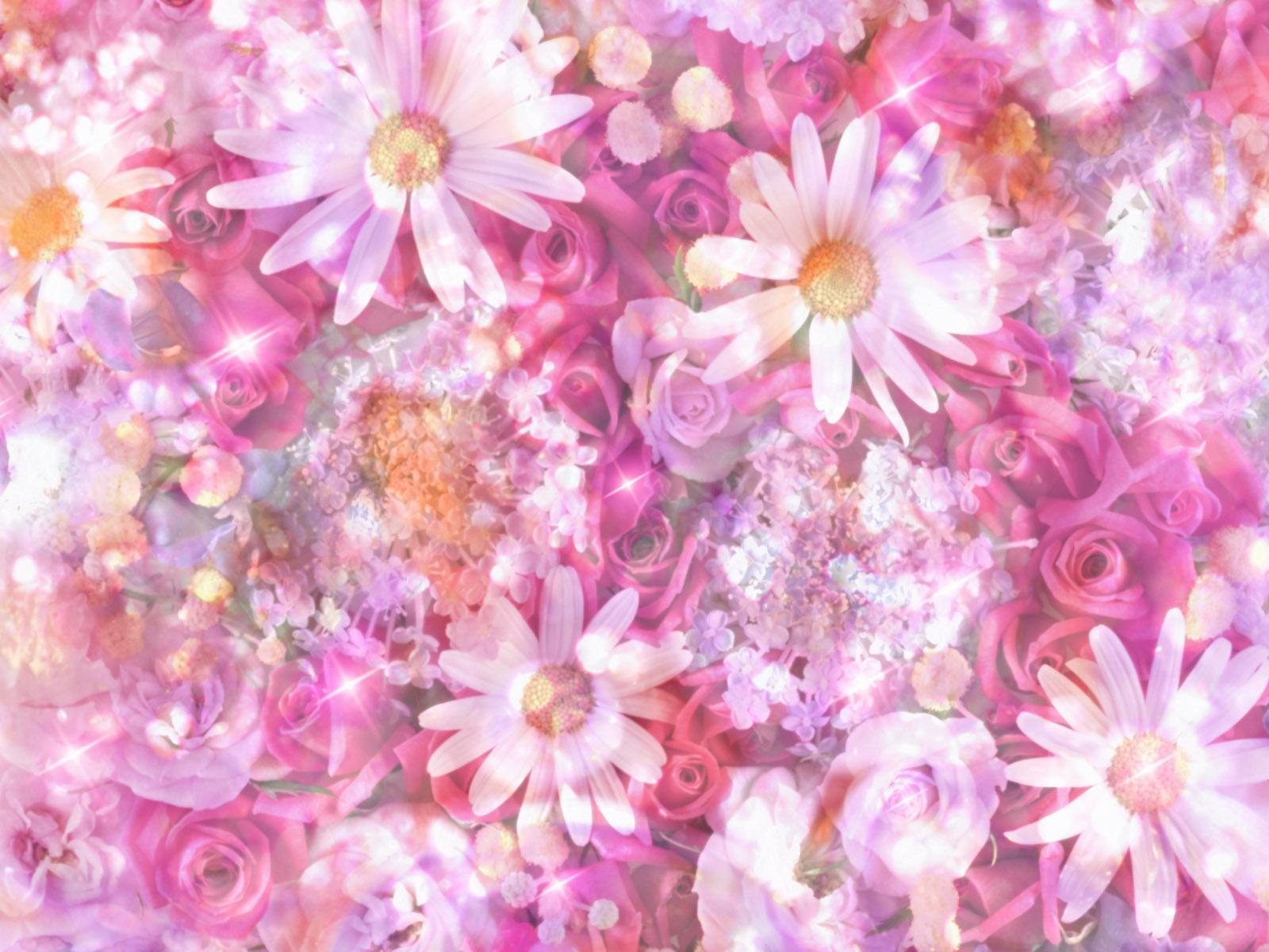 Free Colorful Flower Wallpaper Downloads: HD Wallpapers Colorful Flowers Desktop Backgrounds