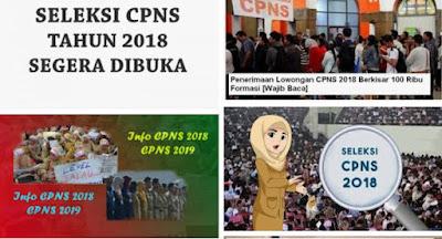Dibuka 250 Ribu Lowongan CPNS 2018, Ini Kriteria Formasinya