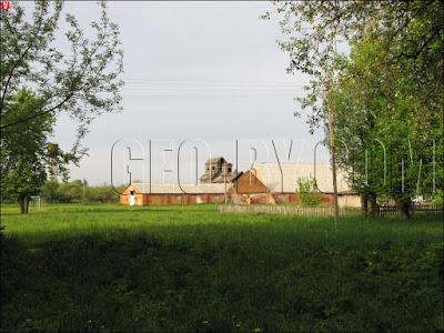 Туча. Руины Т-образного амбара усадьбы Еленских