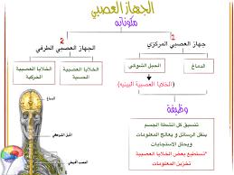 دليل المعلم أحياء الجهاز الدوري والجهاز التنفسي والجهاز الإخراجي