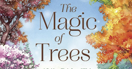 Review: The Magic of Trees by Tess Whitehurst