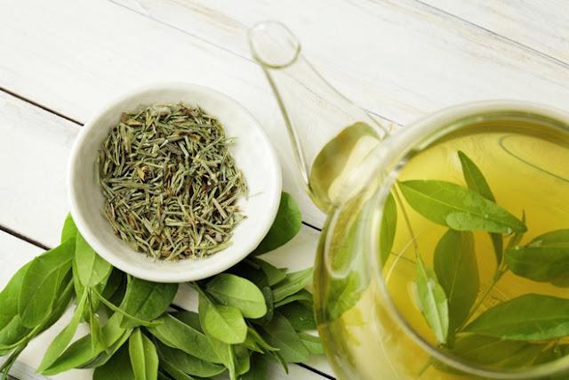 Uống trà xanh thay cho cà phê, bạn sẽ nhận ngay 6 lợi ích không phải thực phẩm nào cũng có đủ