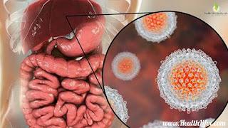 10 दिन में हेपेटाइटिस का पक्का इलाज | Hepatitis Kaise Failta Hai | Hepatitis Kaise Hota Hai.