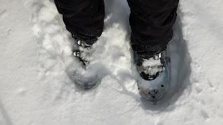 Raquettes, hiver, neige