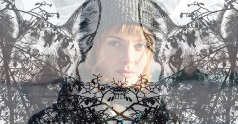 Libro versus Película Aurora boreal. Asa Larsson y Leif Lindblom - Cine de Escritor