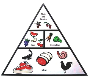 What are the fundamental foods of Paleo diet?