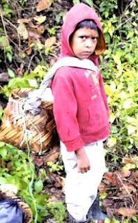 Foto de un niño campesino en el campo