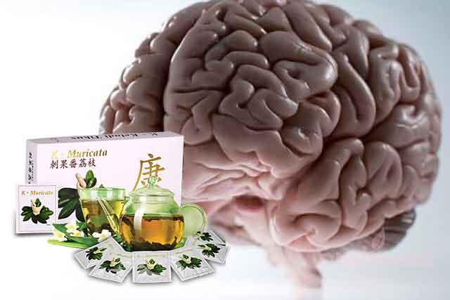 Amazon Plus Obat Kanker Otak Ampuh Alami