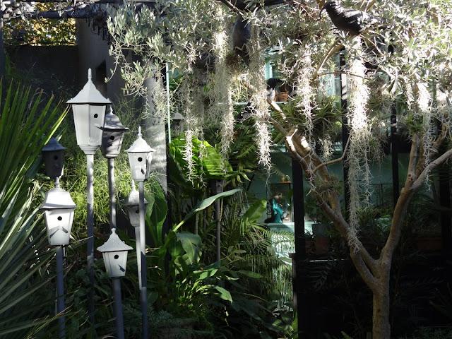 (07) Le jardin de Bésignoles - Privas - Page 4 DSC00398