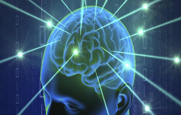 إنطلاق تجارب محاكاة عمل الدماغ البشري