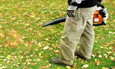 Choose the best leaf blower 2017