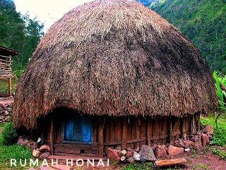 rumah adat papua rumah honai