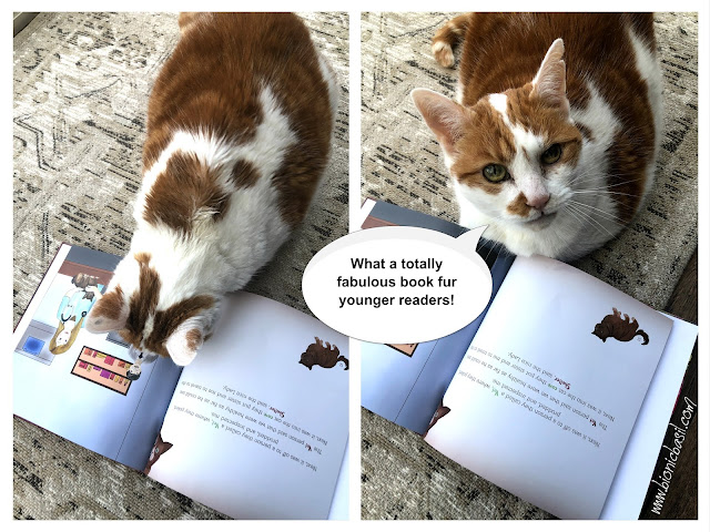 Amber's Book Reviews Ziggy The Rescue Kitty Gets a New Home by Tama Ann Blake @BionicBasil® Feline Fiction on Fridays 1