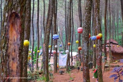 Bola Pohon penuh warna curug lawe