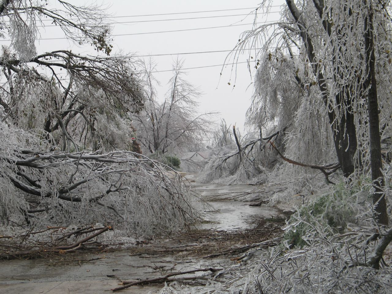 Heart Maine Home Hurricanes Ice Storms And More