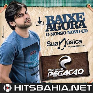 BAIXAR CD – PEDRINHO PEGAÇÃO – CD PROMOCIONAL JULHO 2015 download grátis