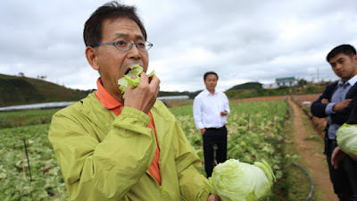 Đơn hàng nông nghiệp trồng rau trong nhà kính tại Tokyo Nhật Bản