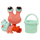 Littlest Pet Shop Singles Hermit Crab (#1867) Pet