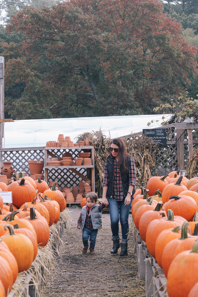 Boston Life and Style Blogger, The Northern Magnolia, sharing her and her family's trip to the pumpkin patch at Allandale Farm.