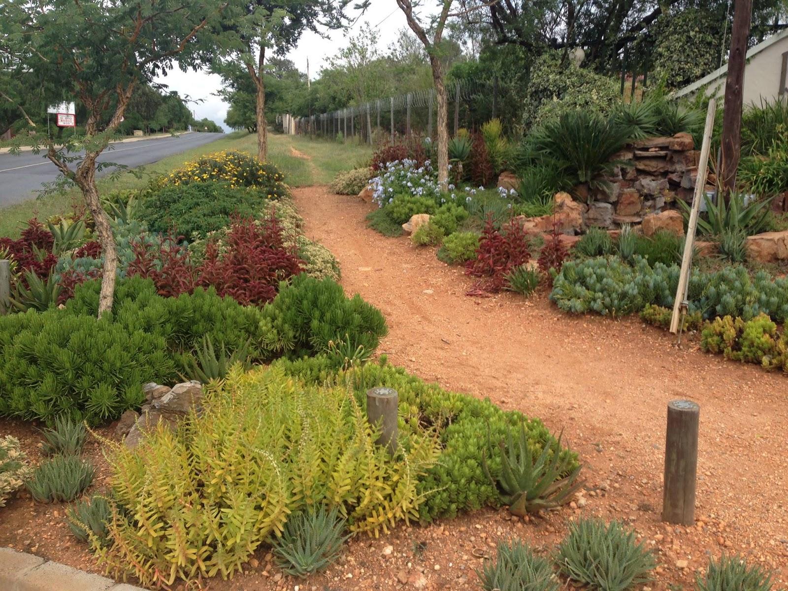 gardening in africa a week of gardening ideas