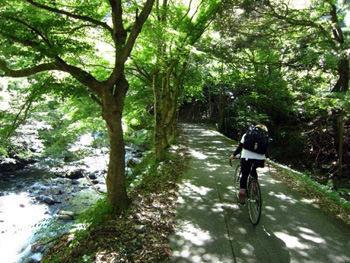 京都~坊村サイクリング