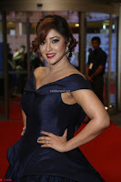 Payal Ghosh aka Harika in Dark Blue Deep Neck Sleeveless Gown at 64th Jio Filmfare Awards South 2017 ~  Exclusive 150.JPG