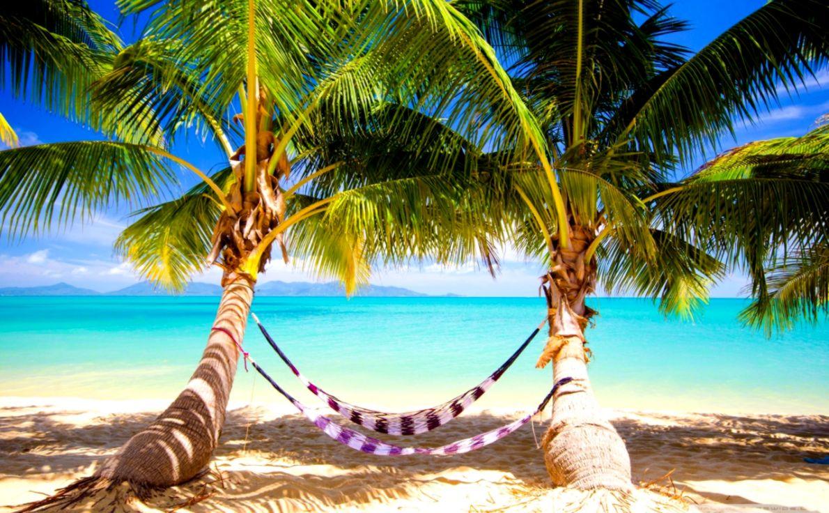 Tropical Beach Hammock ❤ 4K HD Desktop Wallpaper For 4K Ultra HD