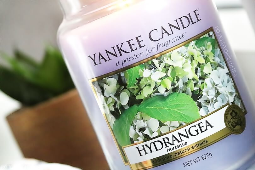 etykieta świecy zapachowej yankee candle hydrangea