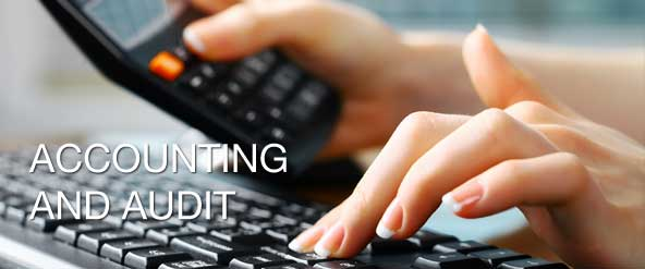 What is the Difference Between an Accountant and an Auditor?