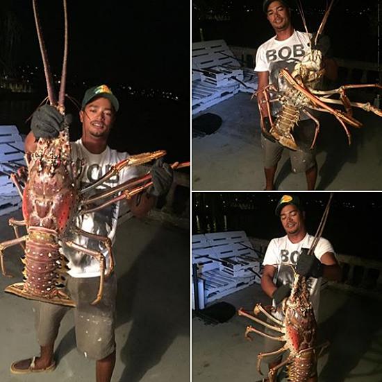 Pescador captura lagosta 'monstro' e surpreende o mundo