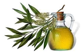 Tea Tree Oil for Cellulitis