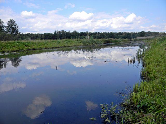 rzeka, fotografia przyrodnicza, przyroda
