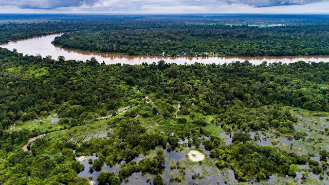 Ekosistem Lahan Gambut Yang Terancam Degradasi