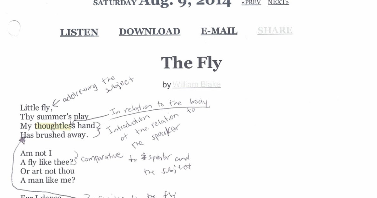 an analysis of the poem the fly There was an old lady who swallowed a fly rate this poem 275 votes  from the book there was an old lady who swallowed a fly about us.