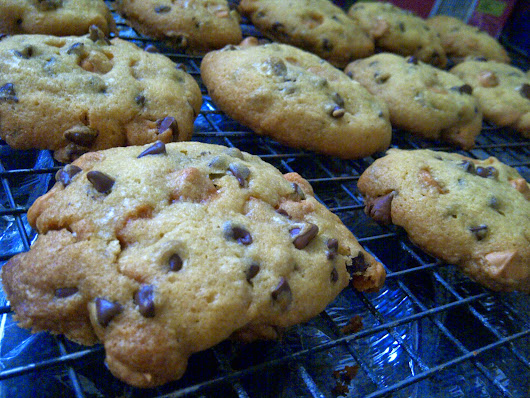 Most Amazing Gluten Free Chocolate Chip Cookies