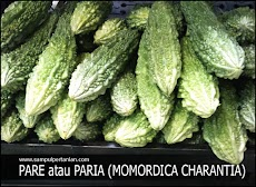 Tips hilangkan rasa pahit pada Pare atau Paria (Momordica charantia)