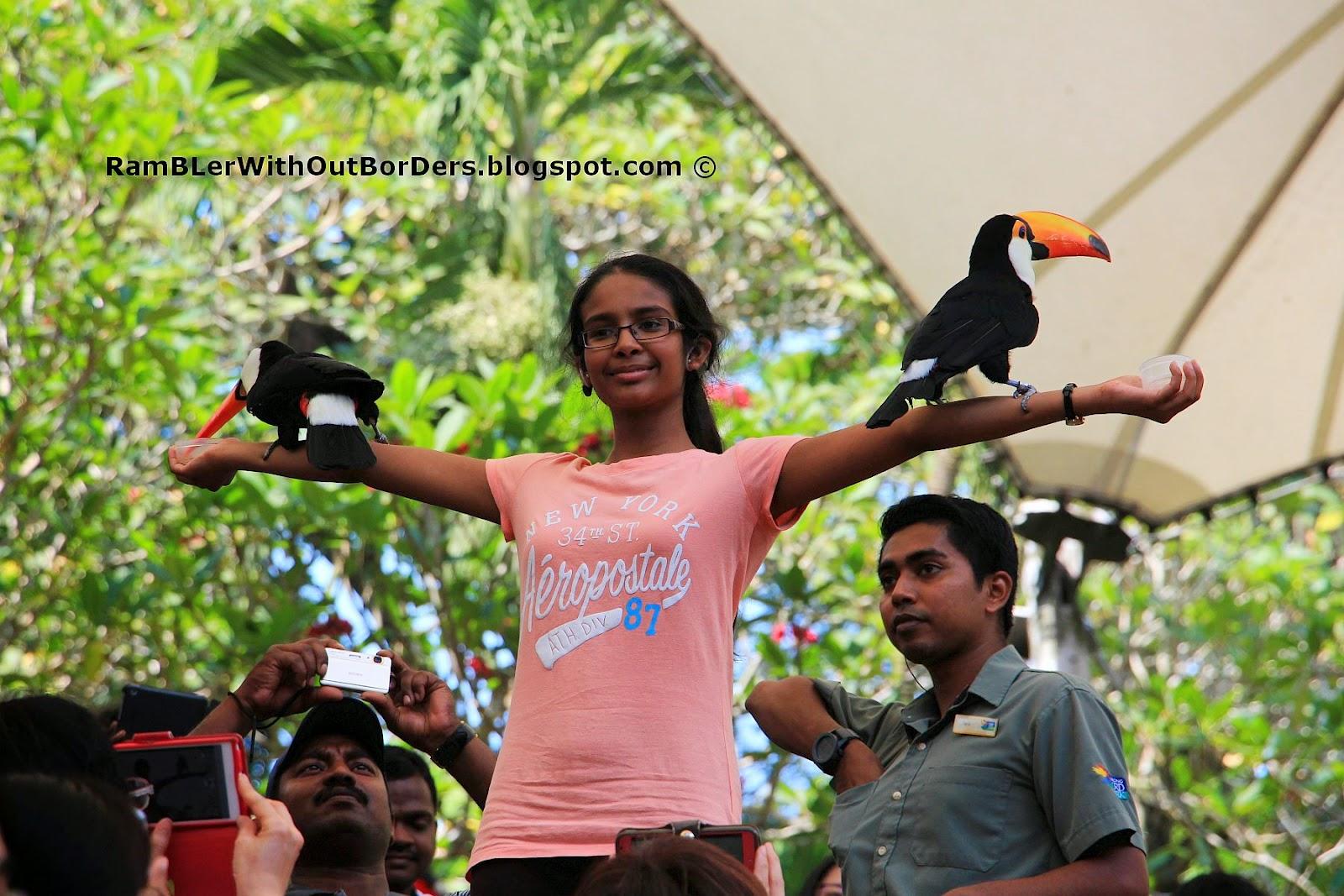 High Flyers Show, Jurong Bird Park, Singapore