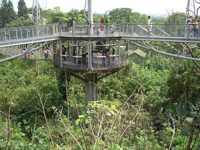 Lory Loft, Jurong Bird Park, Singapore