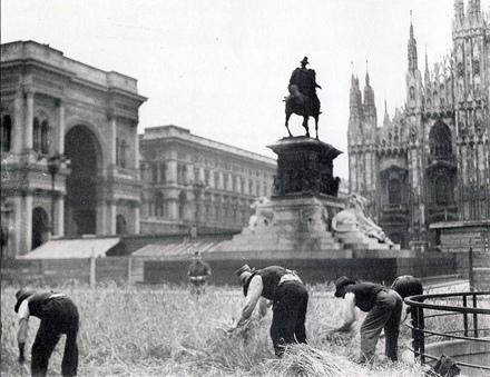 Orti urbani milano orti urbani la storia for Battaglia di milano