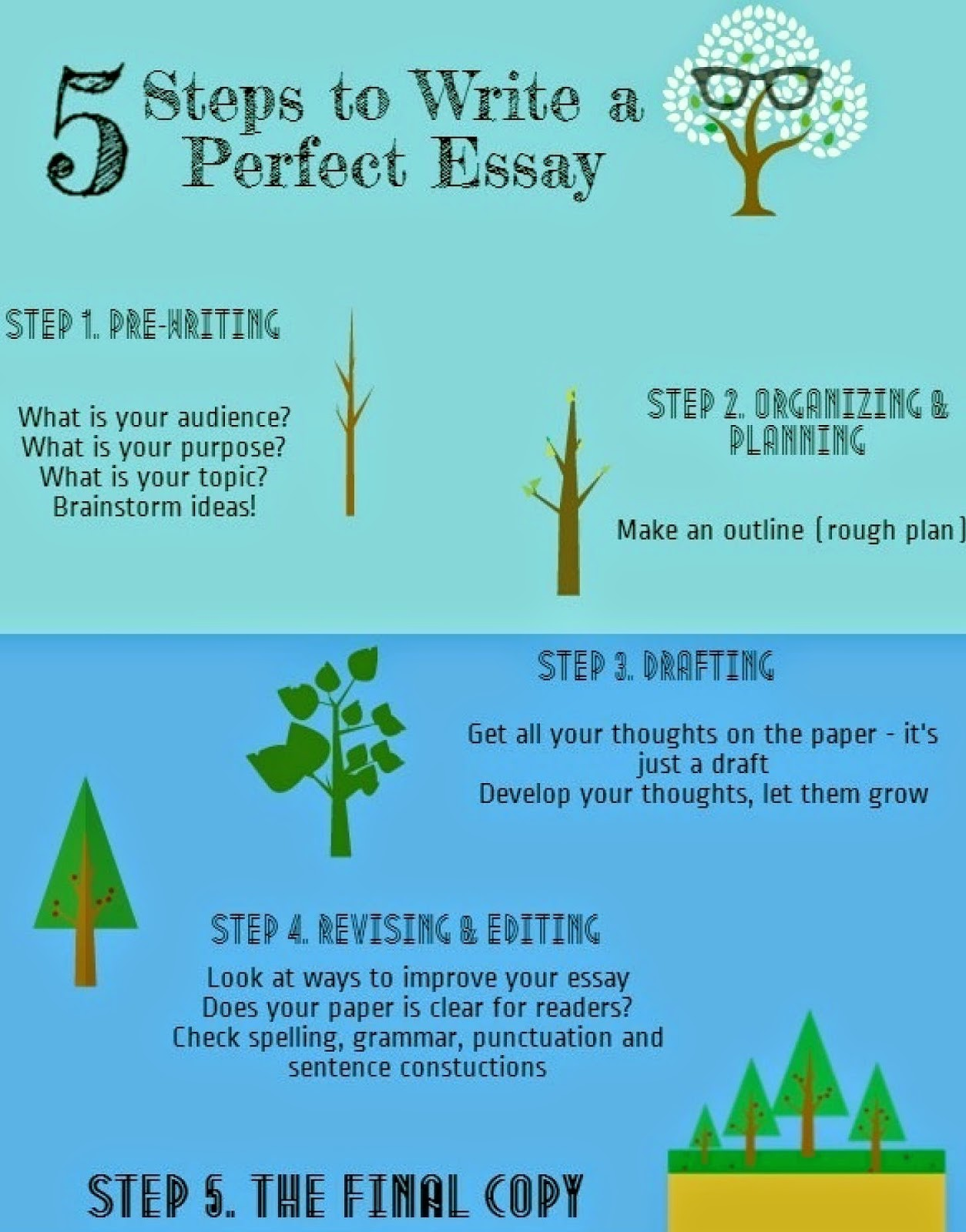 5 Steps to Write a Perfect Essay