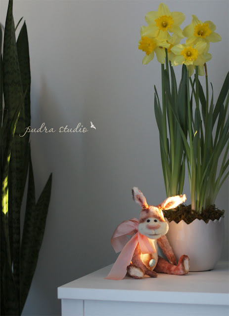 teddy bunny, teddy bear, easter decor, collectible toy
