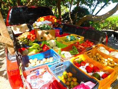 fruit, local culture, locally grown, produce, restaurant, roatan, vegetables, paya bay resort, #payabay, #payabayresort,