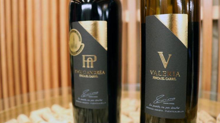 Bodega Iniesta: los vinos del futbolista y sus sucursales