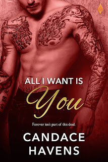 romance novel covers, contemporary romance, All I Want Is You by Candace Havens