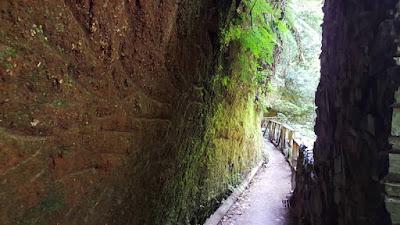 percorso Los Tilos