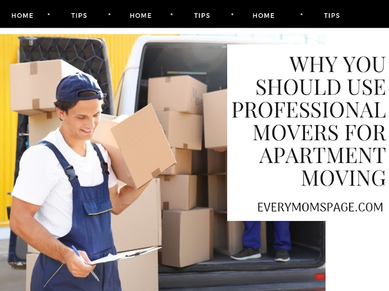 Why You Should Use Professional Movers for Apartment Moving