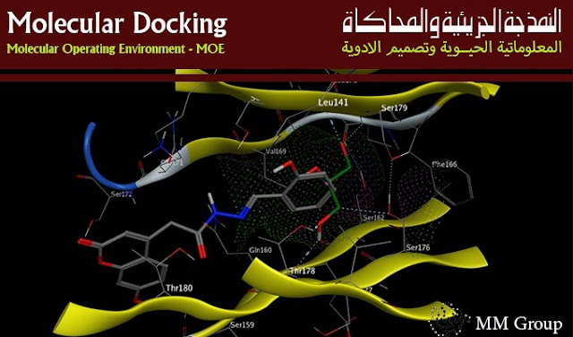 النمذجة الجزيئية,المركبات الكيميائية,النمذجة,المركب,العضوي,Molecular Operating Environment,Molecular Docking, 2D Diagram, 3D Active Site, molecular docking software,docking software list,molecular docking ppt,Docking and Cancer Drug Design,What is Docking?